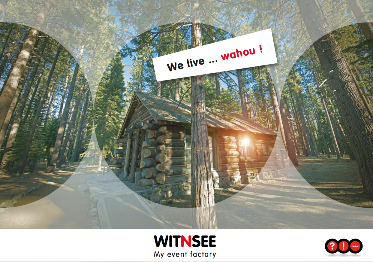 witnsee-pitch-idetop